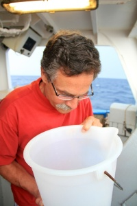 Bob on a recent cruise in the Mediterranean, examining a plankton net tow